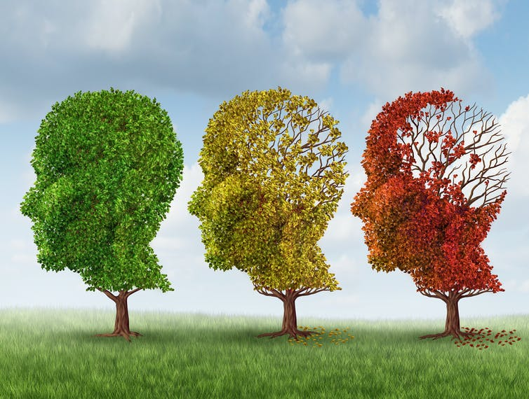 Why don't we have a cure for Alzheimer's disease?